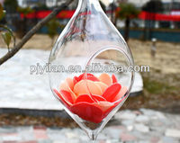 clear glass ball terrarium hanging crystal flower vase