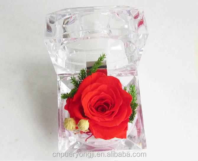 Real Preserved Fresh Flowers Ring Box Forever Lasting Rose