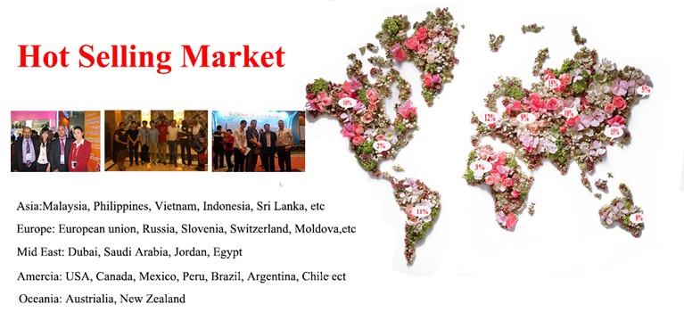 hot selling market.jpg