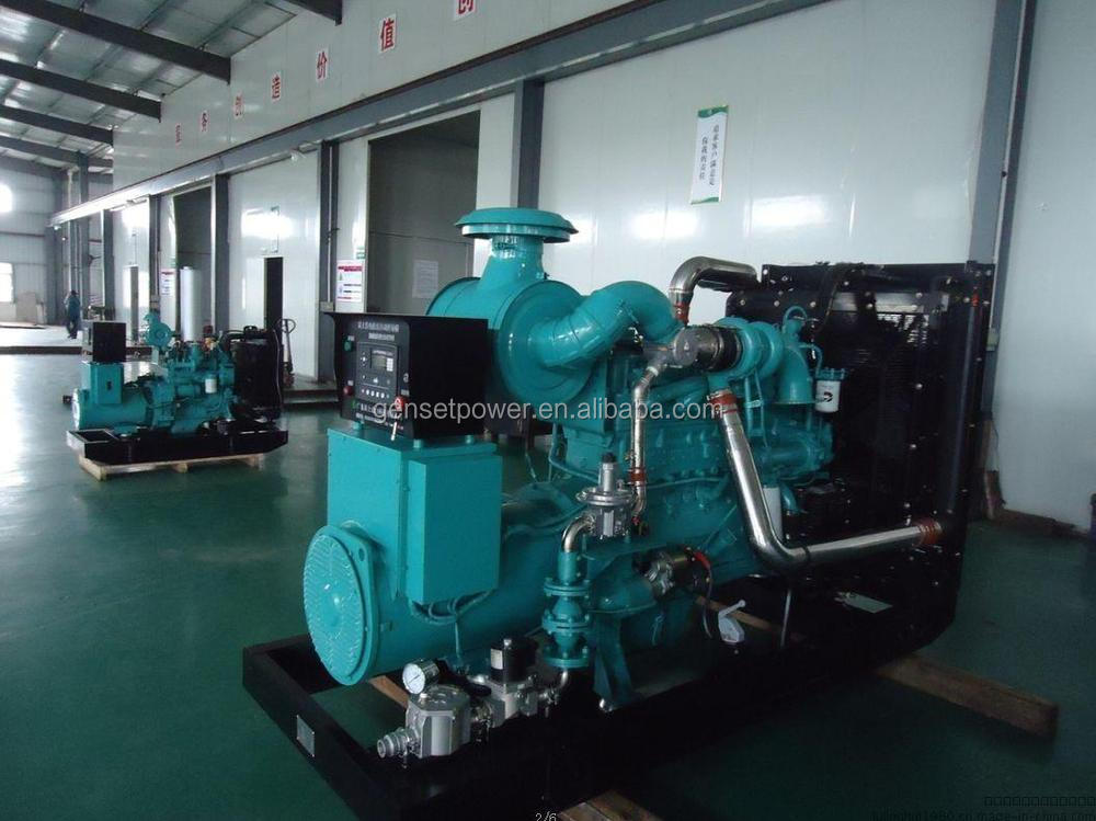 With Cummins Engine 250kva Natural Gas Generators