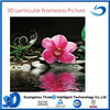 Wall Decoration 3D Plastic Picture with Lenticular Printing of Flower