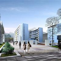 Nyc Rooftop Terrace Landscape Design Service