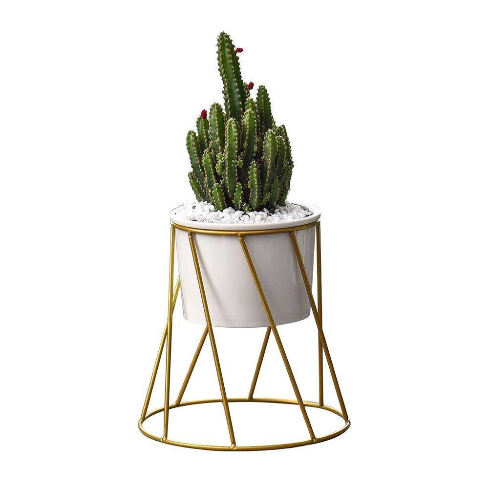 Get Quotations Planter Pots Indoor Y M Tm 6 2 Inch Mid Century Modern Round Plant