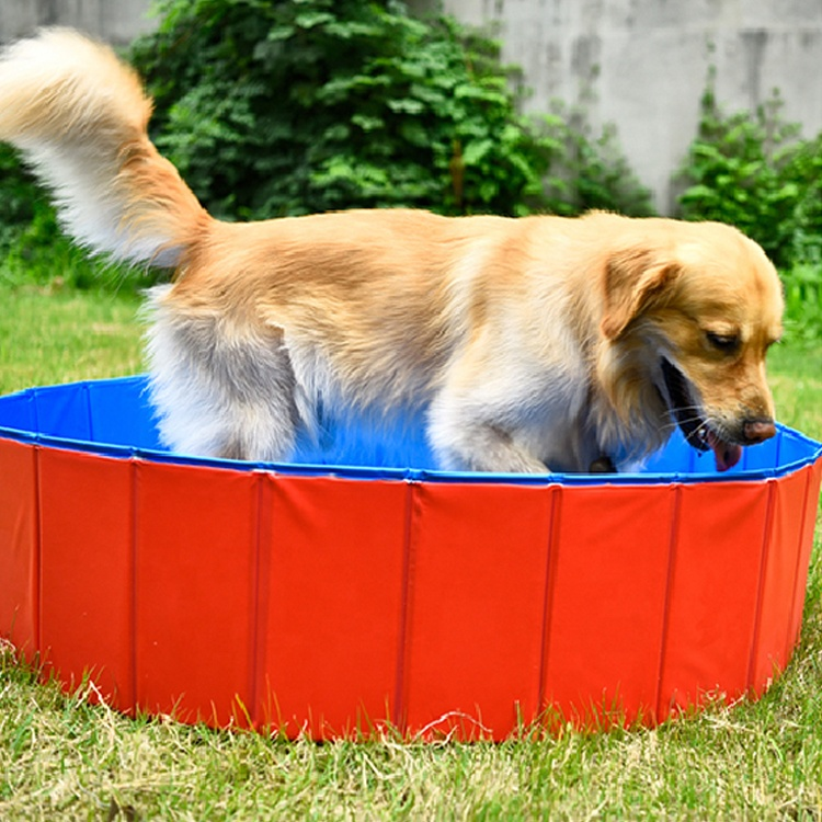 Hot Selling Draagbare PVC Zomer Zwemmen Opblaasbare Hond Zwembad