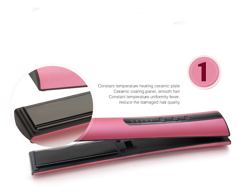 Newest Portable Mini Flat Iron Travel Use Hair Straightener With Holder