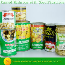 Chinese Canned Mushroom Brands