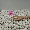Wholesale supply China natural plant pure baishake white kidney bean canned food bean /Alubia/ vanilla beans
