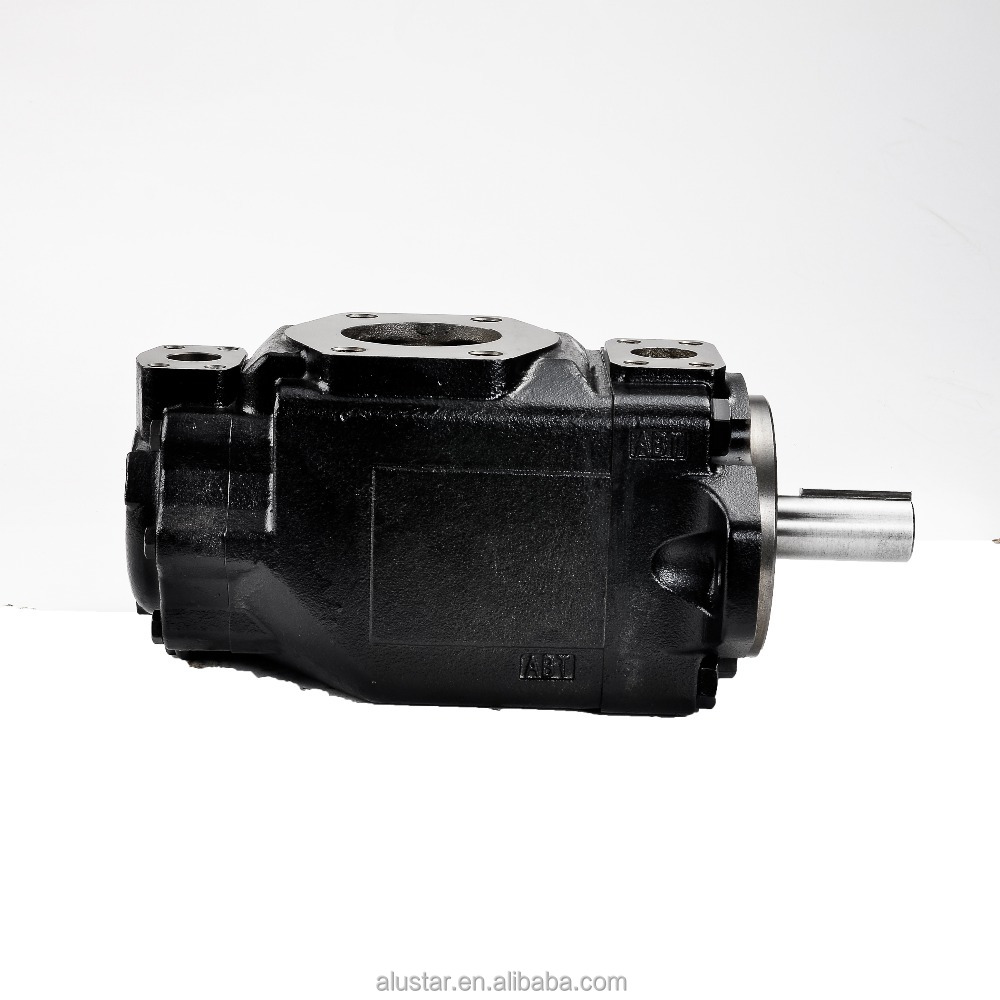 Alibaba Best sale Parker Denison T6 T7 Hydraulic Vane Pumps for plastic machinery