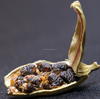 100% small dried cardamom importers of spices of usa cardamom