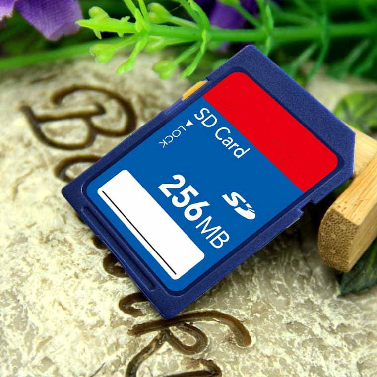 Cheap wholesale OEM 256MB SD card sd memory card