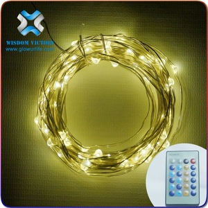 Hot sales Invisible LED String Lights,For Battery Bperated Mini LED Fairy Light Copper String Wire Warm White