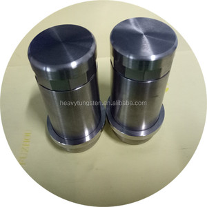 10ml TVS tungsten vial shield