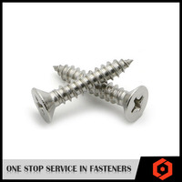 Stainless Steel Philip Drive Type Tapping Screw GB846 Slotted Cross Recessed Countersunk Flat Head Tapping Screw