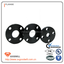 DIN 2573 Plate Flange of Black Painted Surface for DN20 Tube