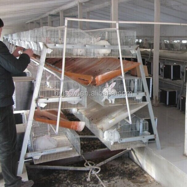 Good Quality Different Kind Rabbit Farming Products