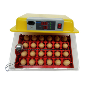 BIOBASE egg incubator high quality for good price