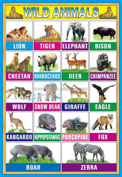 Wholesale Kids Education Poster Of Wild Animal For School ...