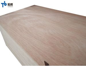 veener bulk birch nature veneer plywood with good price
