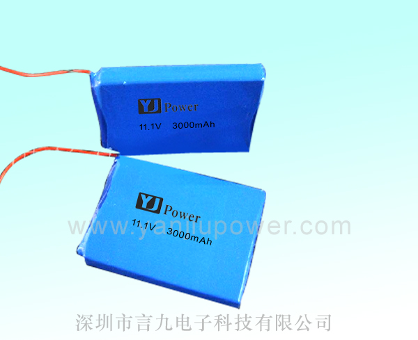 12V 3000mah Lithium Battery Passed UN38.3 MSDS IEC62133 Lipo Battery Pack