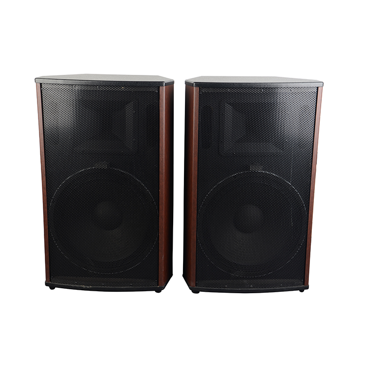 Professional Pa 15 inch Subwoofer powered Outdoor Passive Stage Pair Speaker