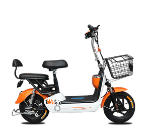 India Bangladesh market steel frame lead acid battery hot selling electric scooter