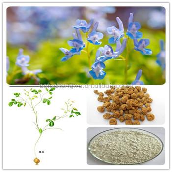 corydalis extract powder/corydalis yanhusuo extract/corydalis extract
