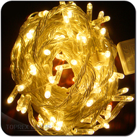 High quality diwali lights outdoor decorations christmas led lights