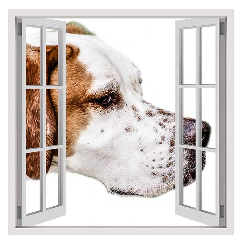 """Adorable Brown Dog by Fake 3D Window 