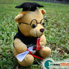 /product-detail/customized-plush-bear-soft-toy-bear-stuffed-toy-bear-plush-toy-bear-with-spectacle-mortar-board-gown-scroll-and-certificate-148202392.html