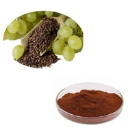 100% Pure Natural Grape Seed Extract Powder for Skin Whitening
