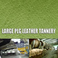soft genuine embossed sheep skin salted raw sheep skin pig leather hide chinchilla style