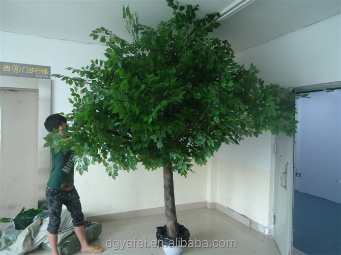 different types of plants and trees/outdoor artificial evergreen ...