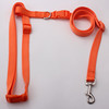 Free sample and popular professional hands free dog leash