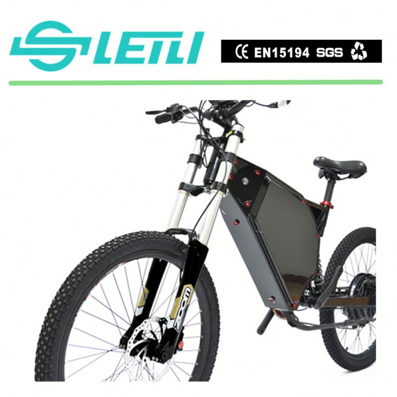 2017 Chinese Electric Bike Hub Motor E Bike For Sale with the TFT display