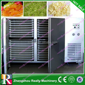 Hot air circulation oven industrial dehydrated vegetables chips