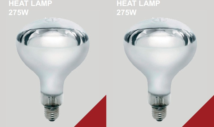 Low Wattage Heat L&s Low Wattage Heat L&s Suppliers and Manufacturers at Alibaba.com  sc 1 st  Alibaba & Low Wattage Heat Lamps Low Wattage Heat Lamps Suppliers and ... azcodes.com
