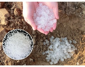 SAP Super Absorbent Polymer applies to water saving agriculture and forestry in the drought wide