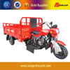 Motorized Driving Type Moto Cargo 300cc/Tricycle for Adults/Cheap Chinese Motorcycles