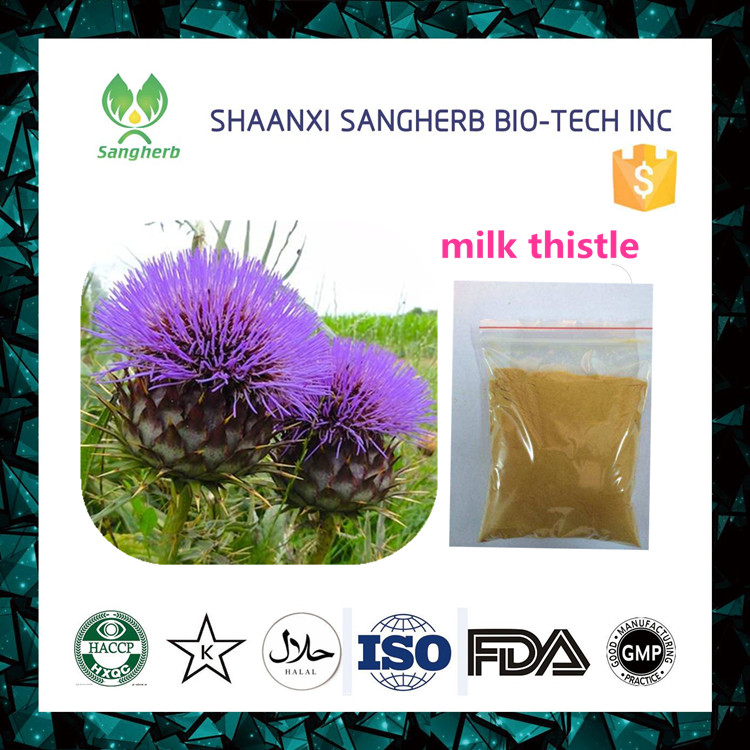 2017 New milk thistle seed silybinin powder with high performance