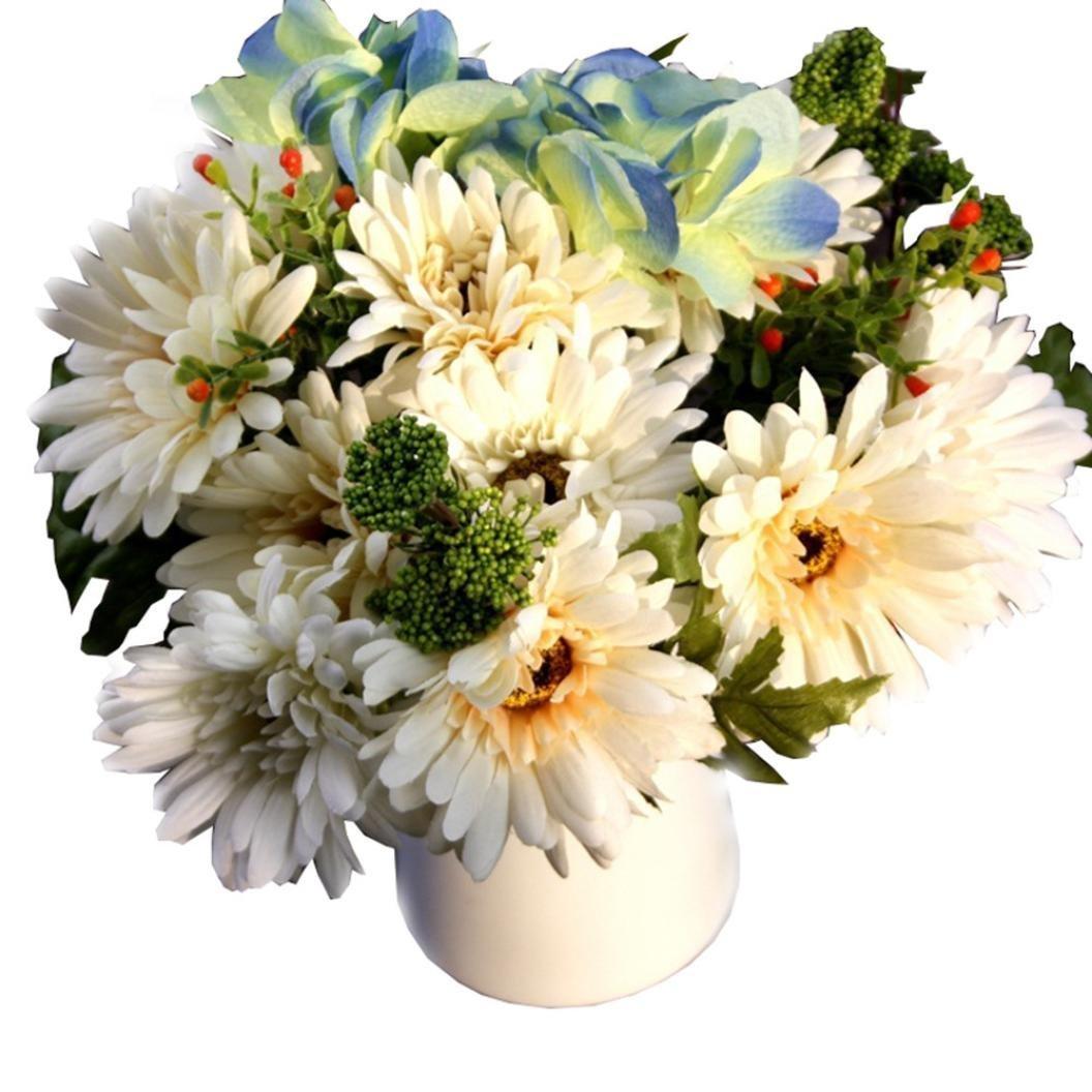 Cheap Dried White Chrysanthemum Flower Find Dried White