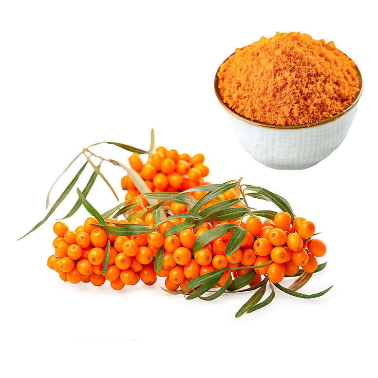 도매 seabuckthorn sea buckthorn 추출물 분말