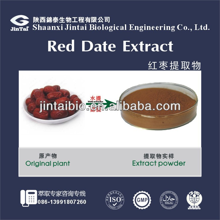 100% natural chinese date extract 10:1