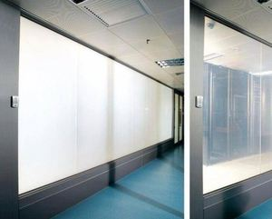 chott glass/smart shield/induction glass