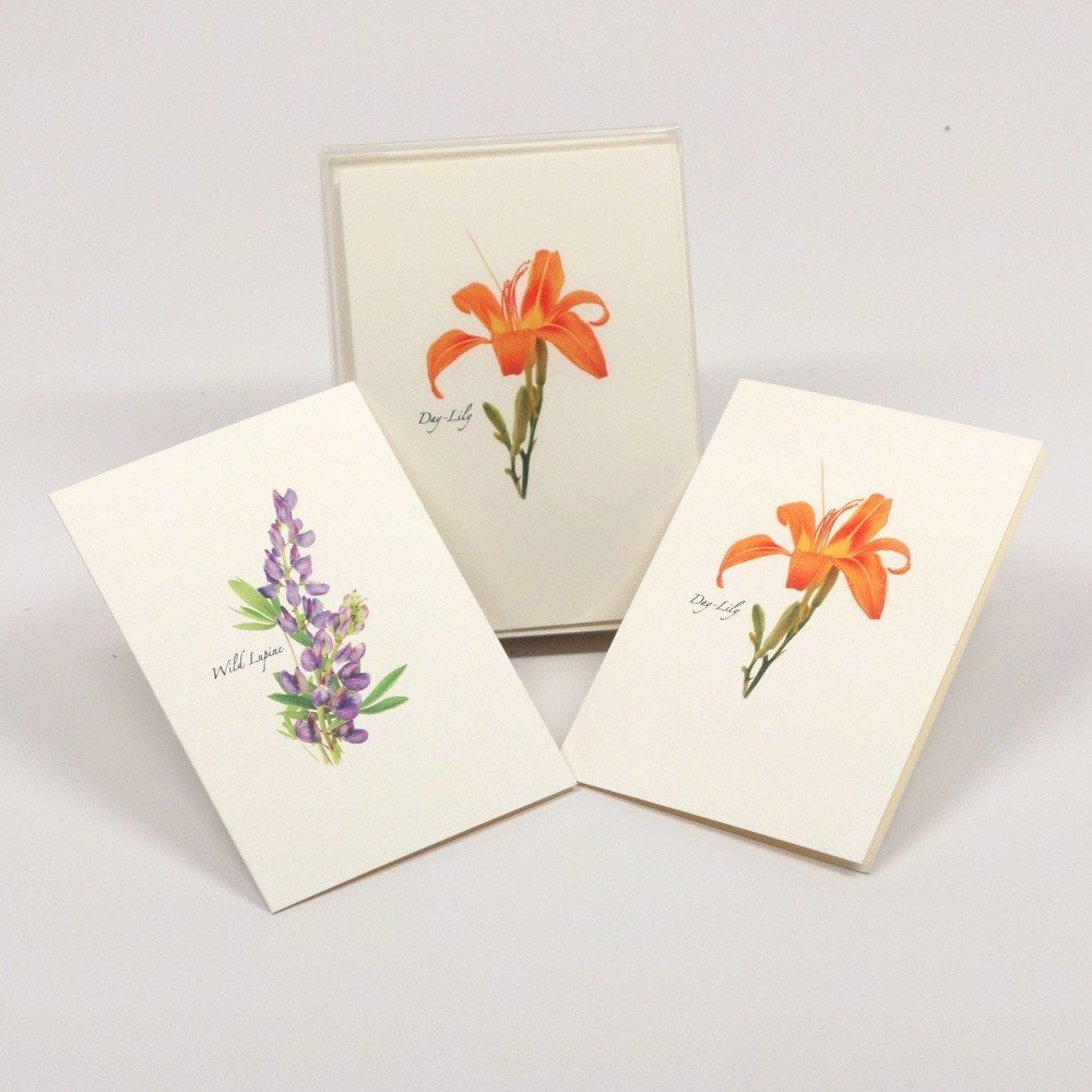Steven M. Lewers Wildflower Assortment Boxed Note Cards-- Set of 8