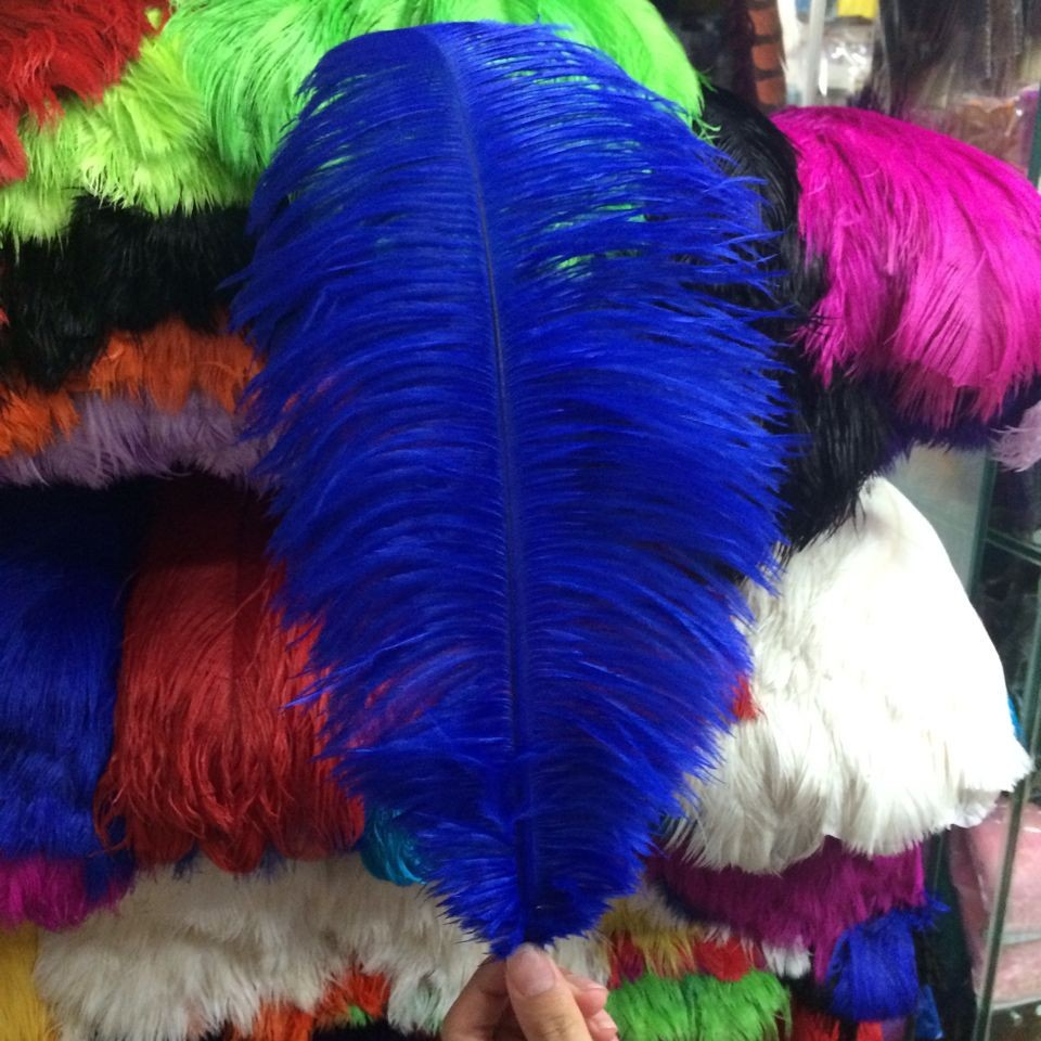 Different Colors  Ostrich Peacock Turkey Feather  For Birthday and celebration