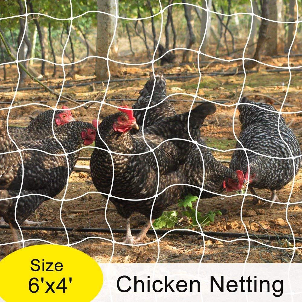 Mr.Garden Trellis Netting,Chicken Netting,Poultry Fence, Cucumber Climbing, Tomato Trellis Netting, 6ft x 4ft (1)