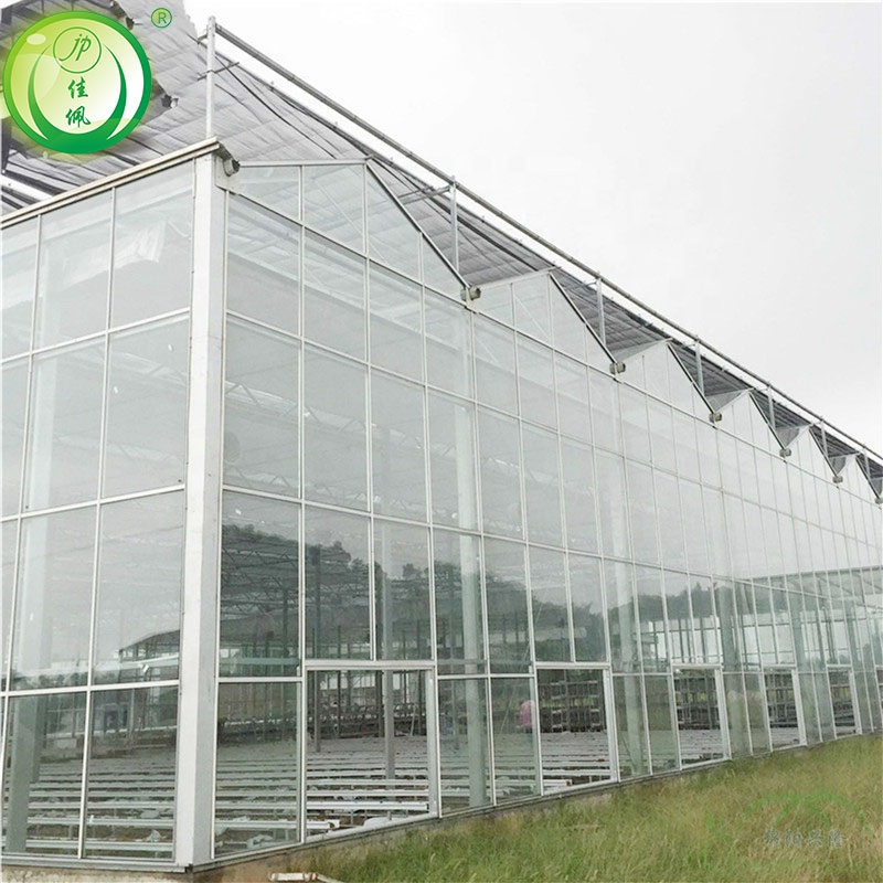 China Greenhouse Farming, China Greenhouse Farming