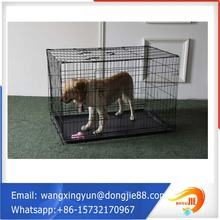 iron dog cage customized