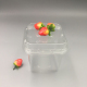 Rectangle Clamshell PET Plastic Blister Fruit Box