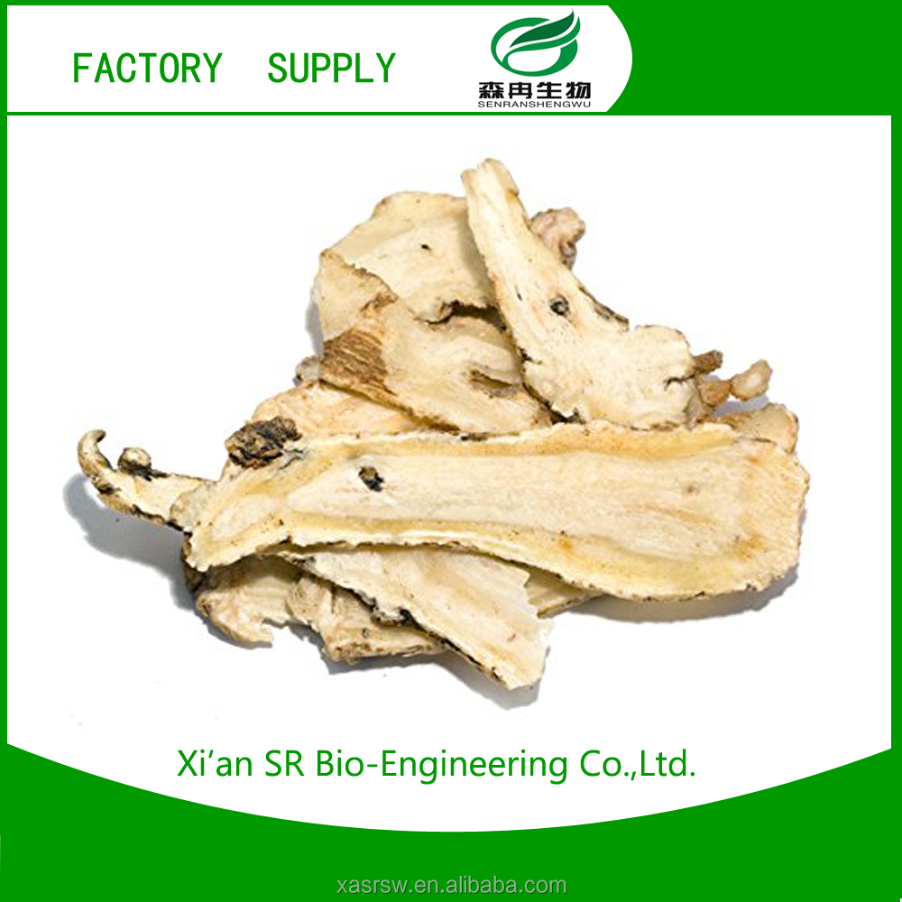 SR Herb Plant Extract Angelica Extract/dong Quai Extract Medicine For Blood Circulation